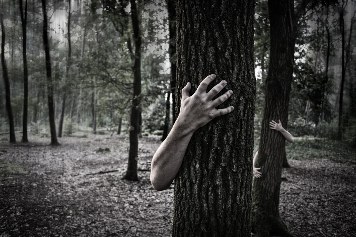 Beitragsbild: Quiz: Würdest Du in einem Horrorfilm überleben?
