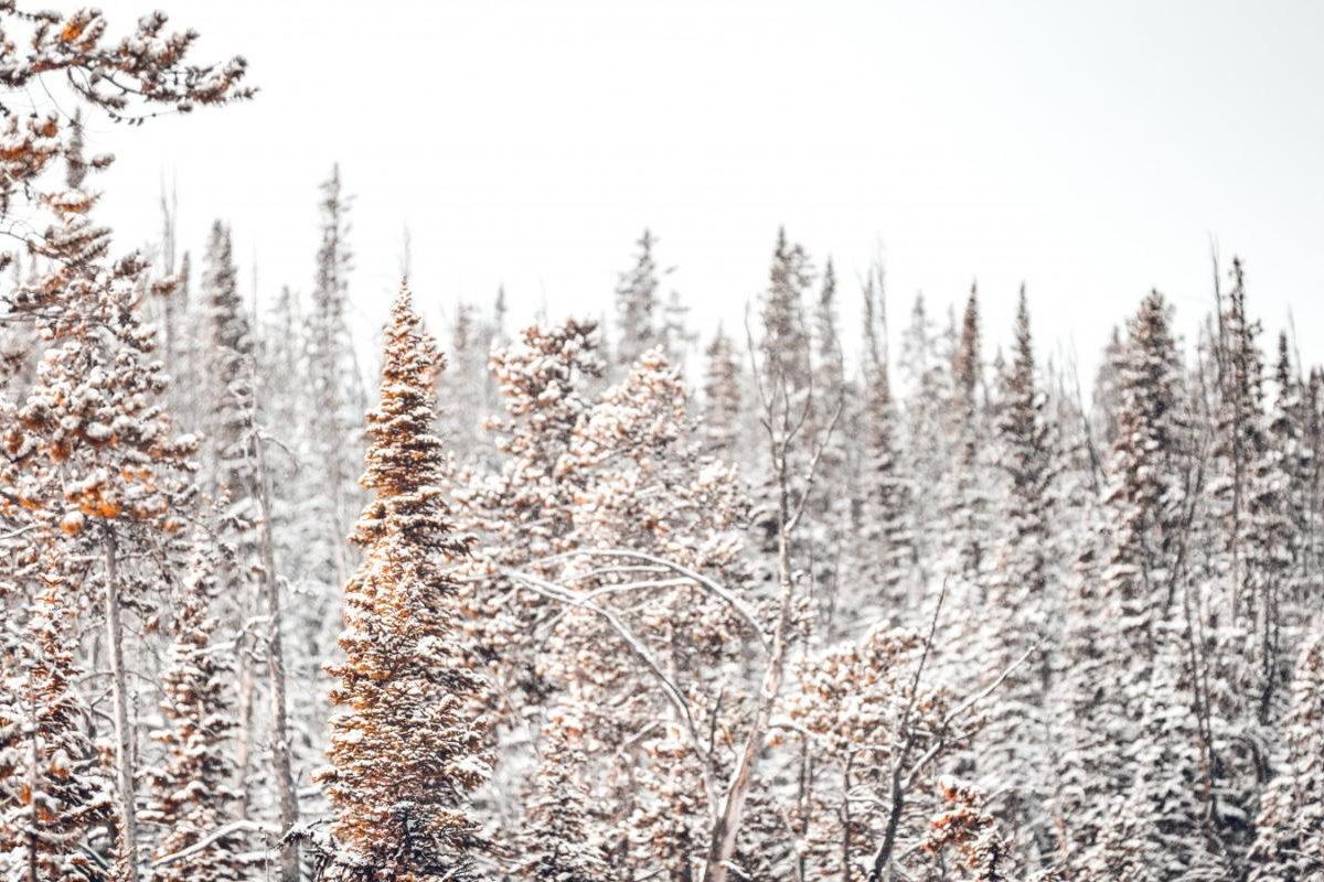 Beitragsbild: A Last Christmas Carol
