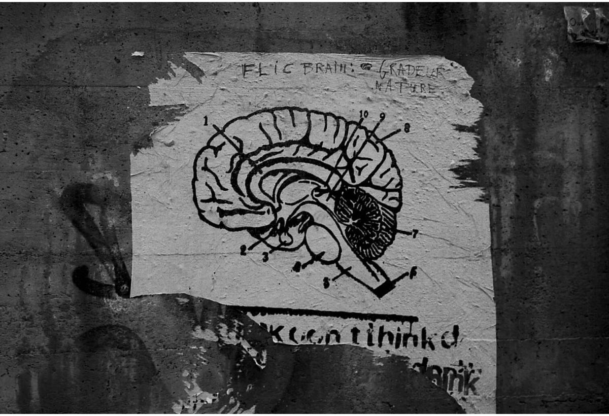 Beitragsbild: Test: Wie miserabel ist deine emotionale Intelligenz?